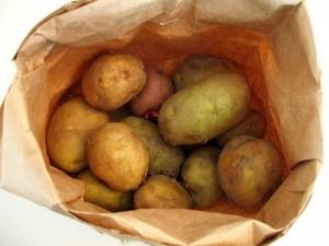 conservación patatas