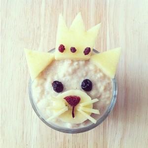 oat cat