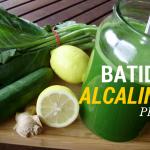 Batido Alkalino Plus
