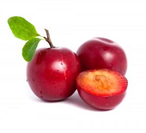 Homenaje a la ciruela de primavera the food therapy for Ciruela santa rosa