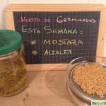 Huerta hurbana