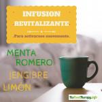 Infusión revitalizante -Especial verano-