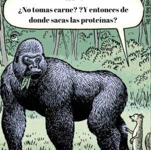 Gorila vegano