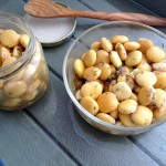 Snacks de lupines adobados
