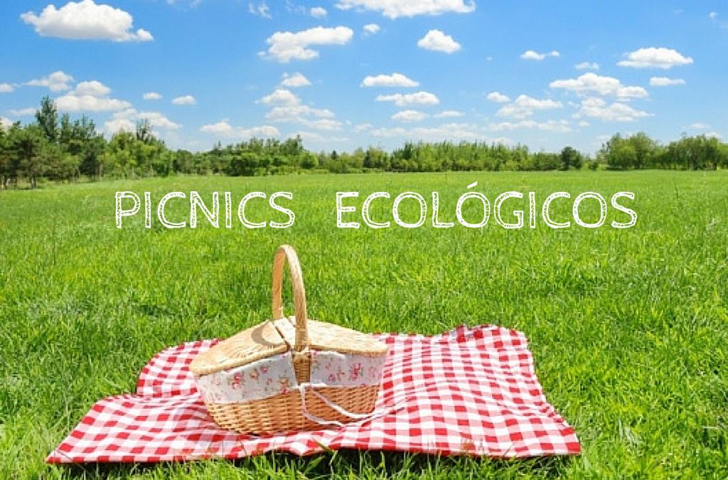 Picnics creativos y ecológicos